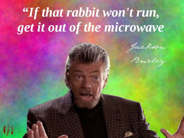 """If the rabbit won't run, get it out of the microwave"""