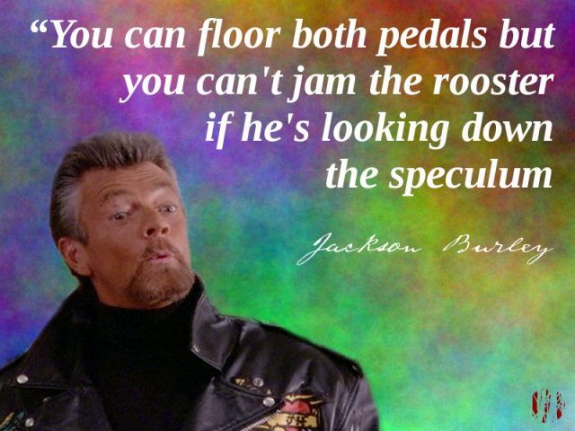 """You can floor both pedals but you can't jam the rooster if he's looking down your speculum"""