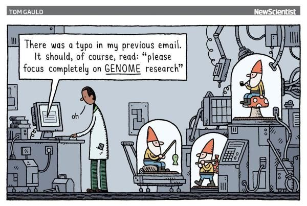 A scientist reads an email pointing out a spelling mistake in a prior message whilst around him gnomes are in the process of being studied.