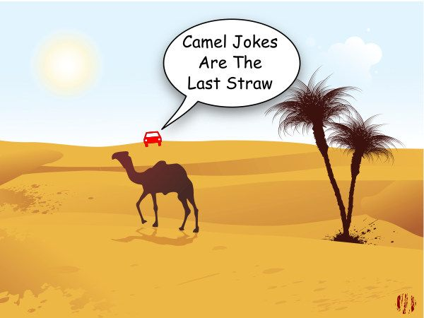 "A cartoon car in the far distance looks across the desert toward an oasis where a dromedary stands and says, ""Camel jokes are the last straw""."