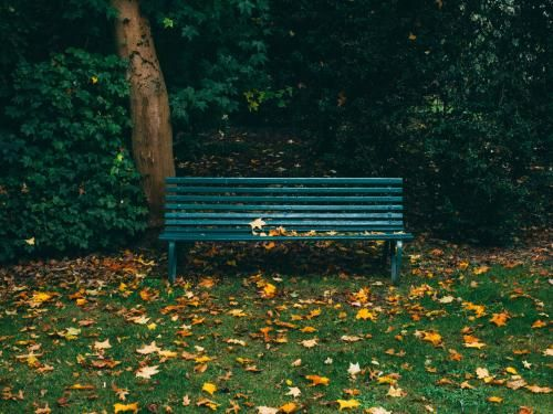 Photo of a park bench by Will Paterson from Unsplash